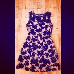 Sweet Storm Dresses - NWT Pink and Black Velveteen Dress - Sweet Storm